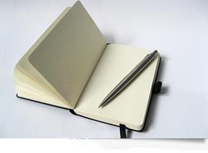 Illustrated man essay prompts